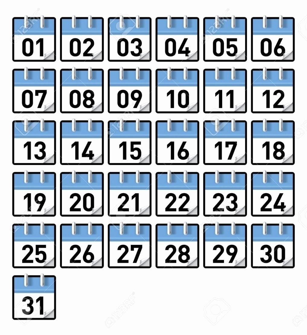 Calendar Numbers 1-31 To Print | Blank Calendar Template Calendar