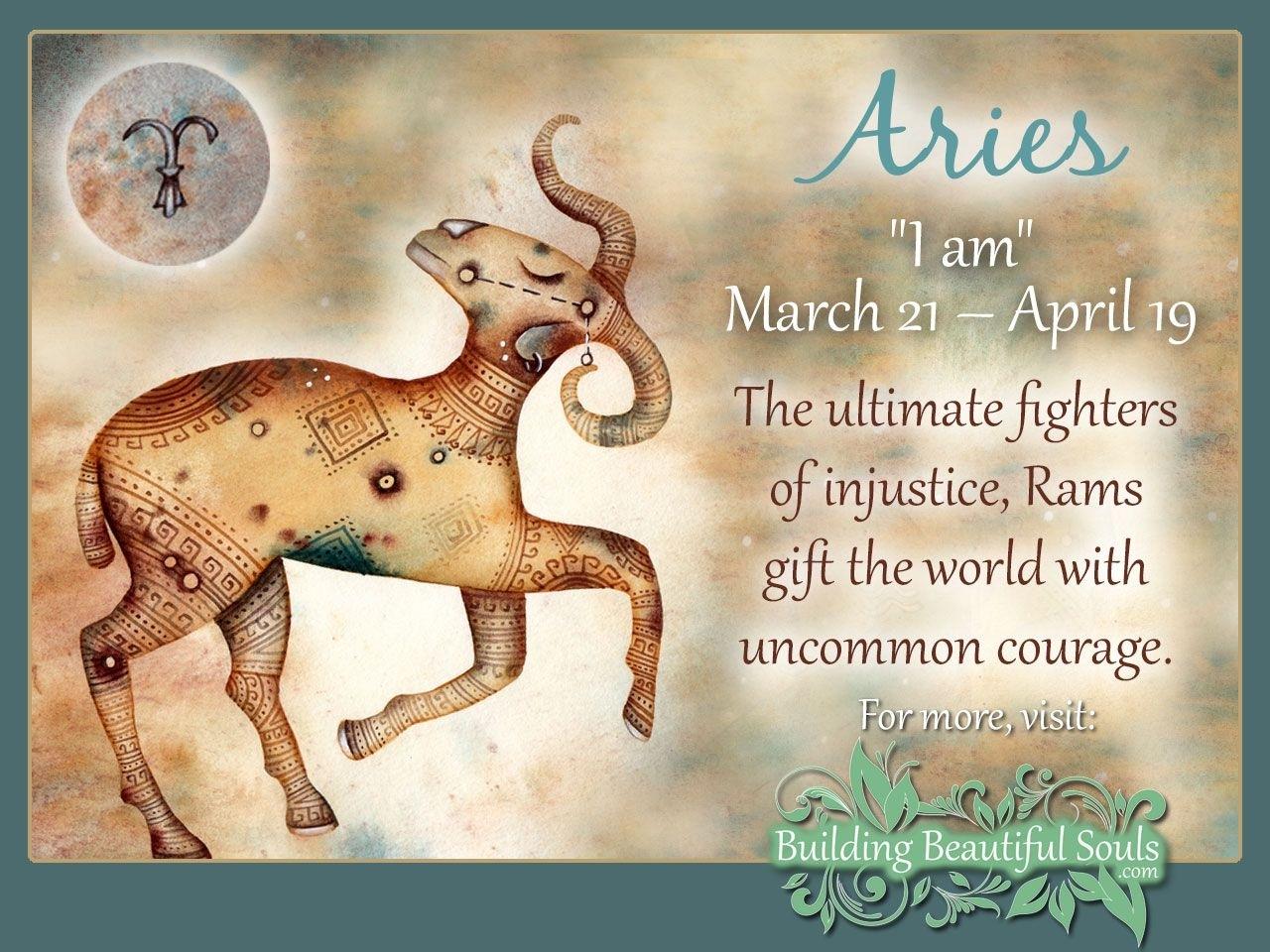 Western Zodiac & 12 Zodiac Signs Meanings | Traits, Personality