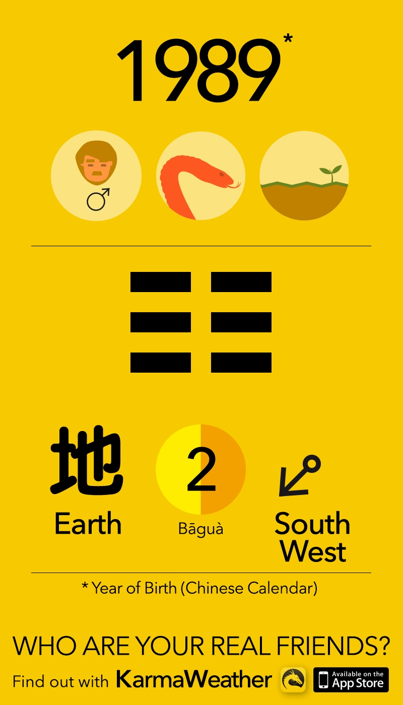 Year Of The Snake - Chinese Zodiac Snake   Personality   Pinterest