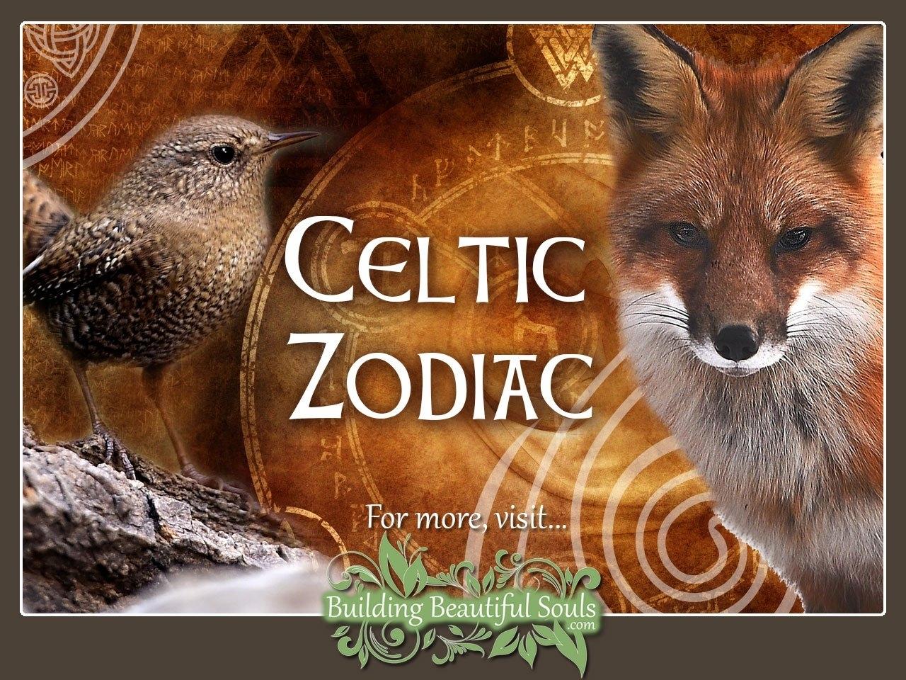 Celtic Zodiac Signs & Astrology | Celtic Animal Zodiac Meanings