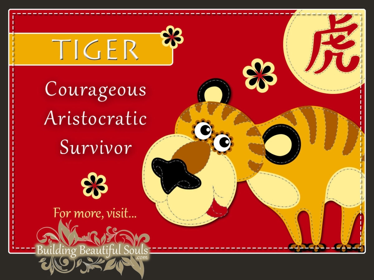 Chinese Zodiac Tiger | Year Of The Tiger | Funny Horoscopes & Funny