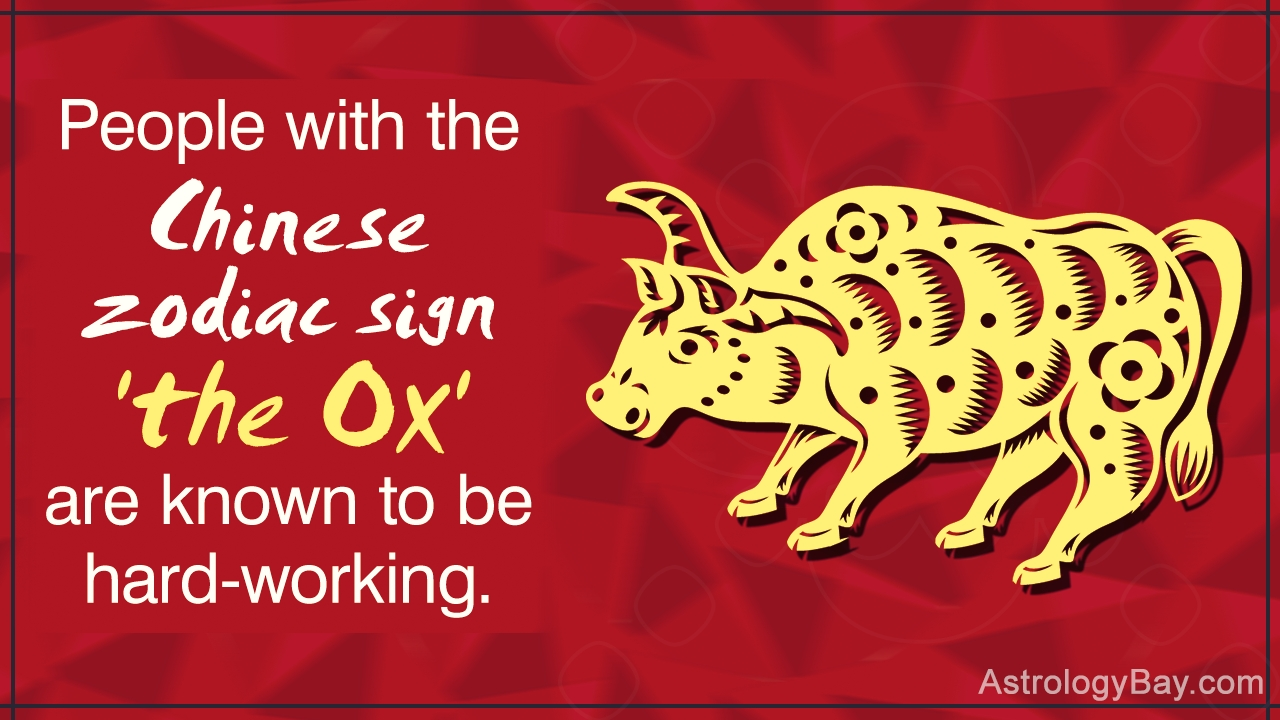 Detailed Information About The Chinese Zodiac Symbols And Meanings