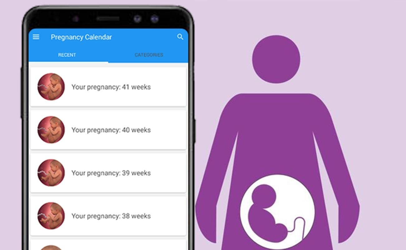 Pregnancy Calculator & Calendar: Weekweek For Android - Apk Download