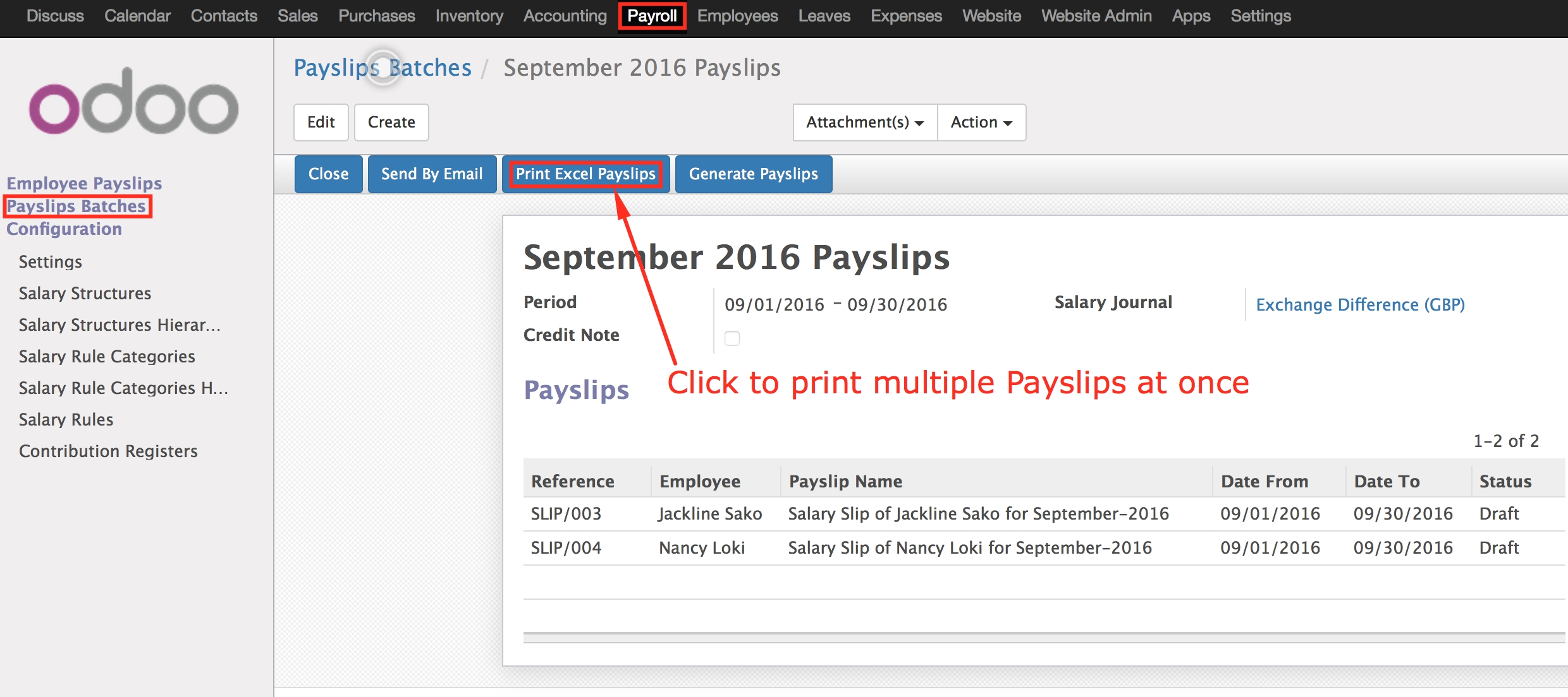 Professional Excel Payslips   Odoo Apps