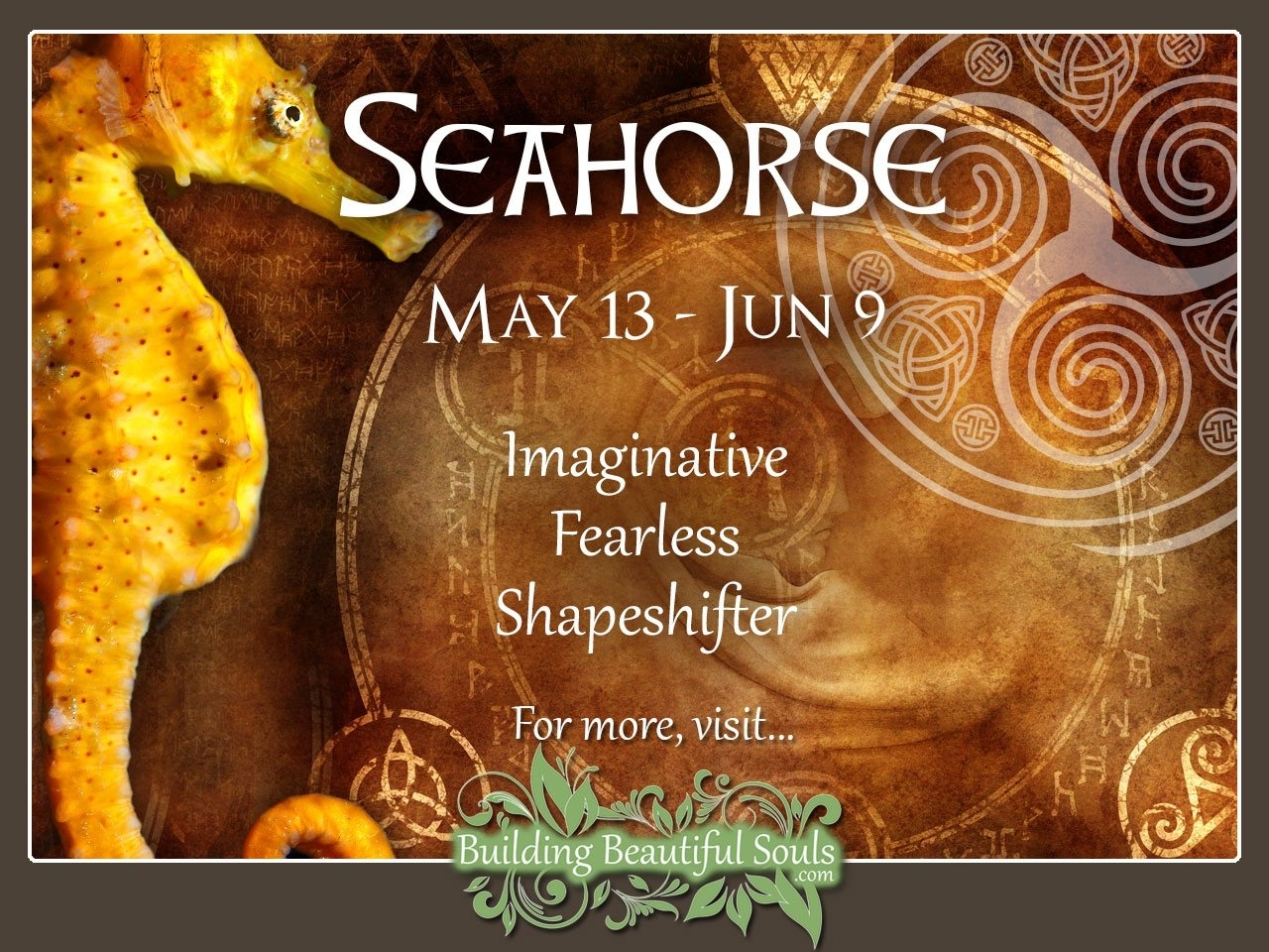 Seahorse Celtic Zodiac Sign Meanings, Traits, Personality