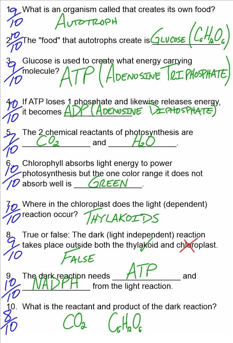 Biodub Help For Thursday's Quizlet On Energy