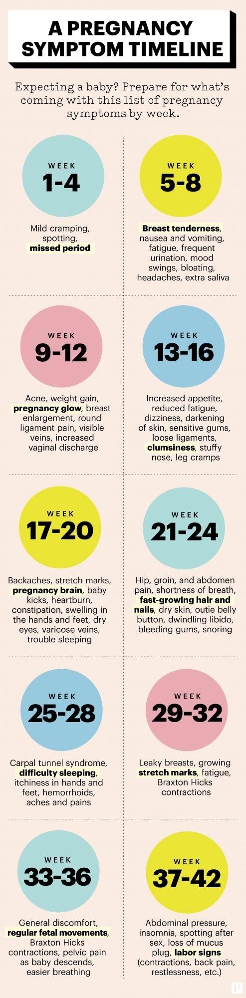 Pregnancy Calendar 7 Weeks | Ten Free Printable Calendar ...