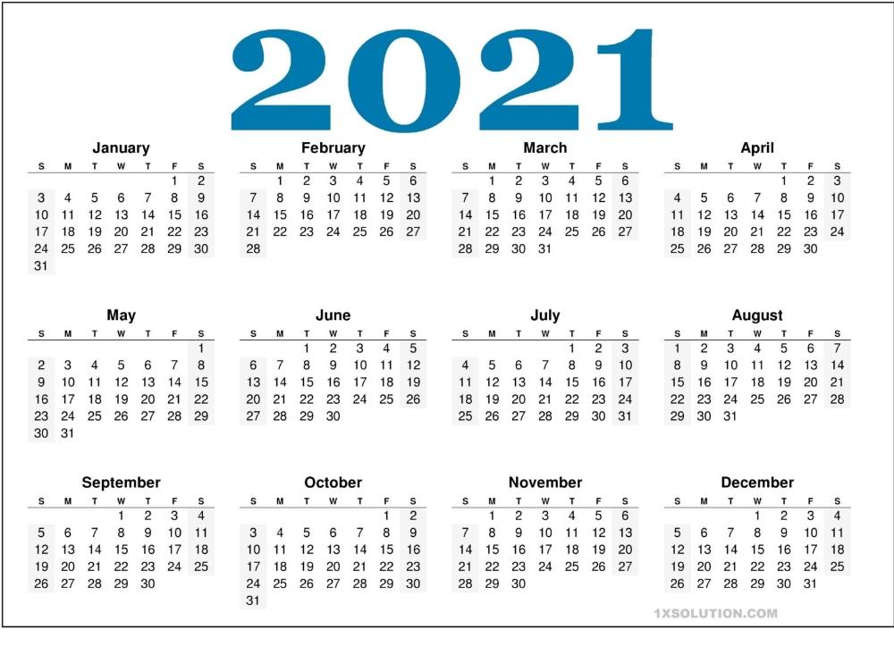 2021 Daily Calendar: To Write Your Important Schedule | | Calendar In 2020 | Calendar Printables